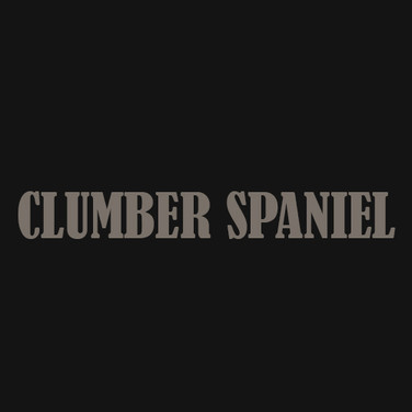 CLUMBER SPANIEL.jpg
