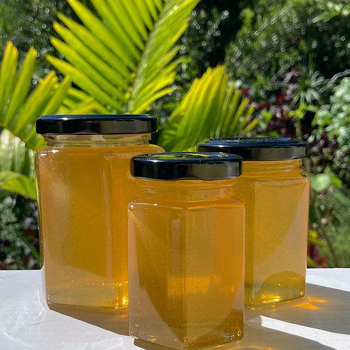 Ohia Lehua Honey / Spring 2021 - Single-estate Varietal