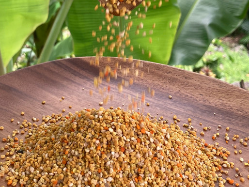 BEE POLLEN RECIPES