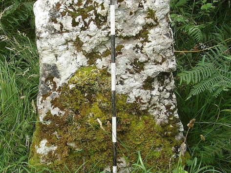 Bryn Alyn - Standing Stones