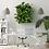 Thumbnail: Living Plant Frame