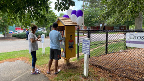 The Best Little Free Library