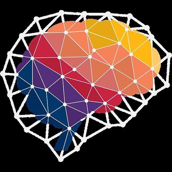 Diplomado en Neurociencia Cognitiva