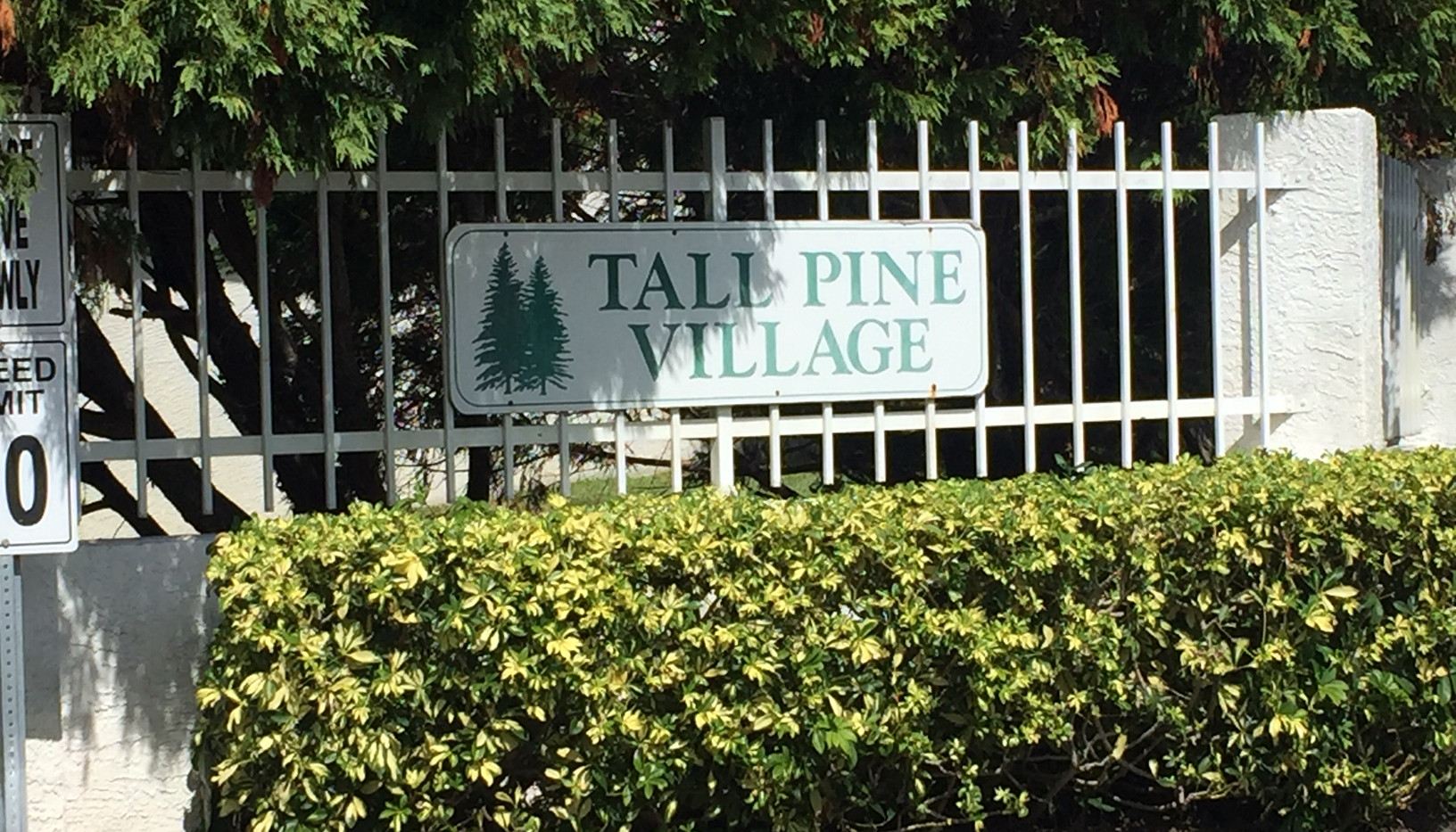 Tall Pine Village Townhomes