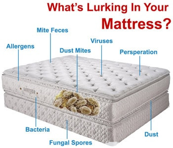 allergens, mites and viruses stay in your mattress