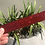 Thumbnail: Resin Bookmarks - Glitters