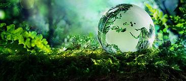 Environmental-Studies-Banner1_edited.jpg