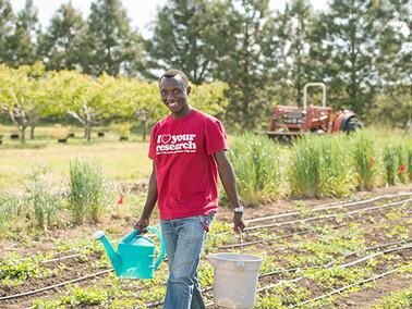 Quinoa: Seeds of hope for Rwandan researcher