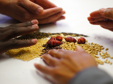 A pandemic of malnutrition calls for new food policies in Africa