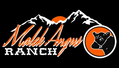 Malek Angus Ranch