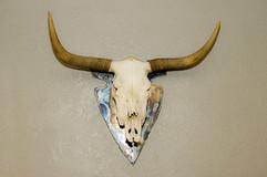Skull Mount 2.jpg