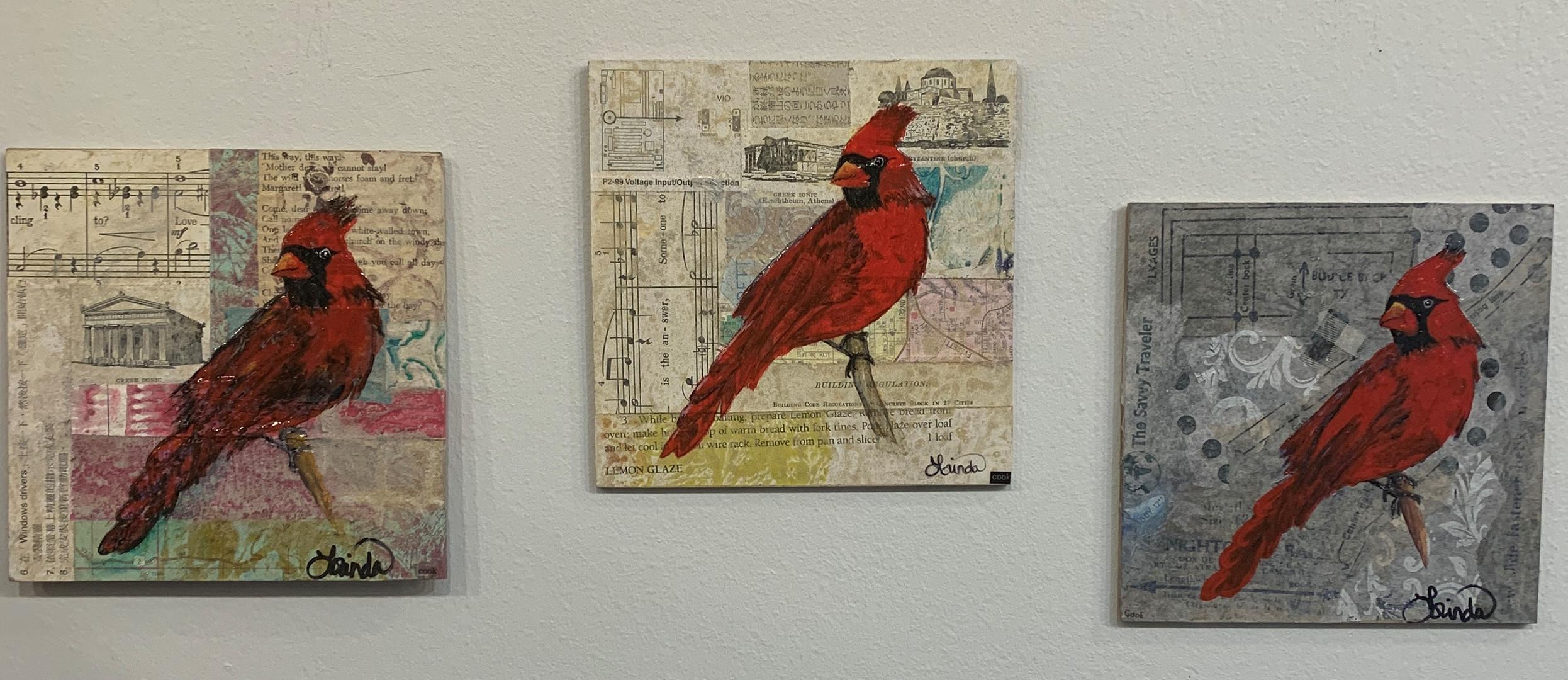3 Cardinals 2020.JPG.jpg