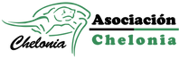 Logo Amplio s-f.png