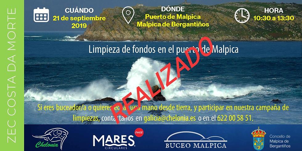 Limpieza de fondos - Puerto de Malpica 2019 (EVENTO YA REALIZADO)