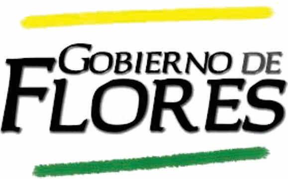 GOBIERNO FLORES.jpg