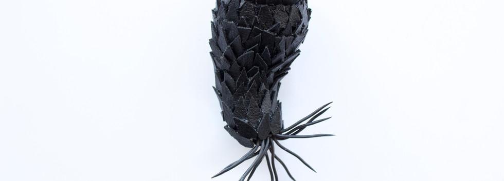 Crown Cactus