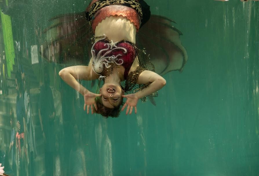 upsidedownmermaid.jpg
