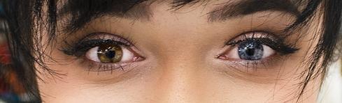 Kat Eyes.png