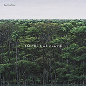Semisonic_-_You're_Not_Alone.png