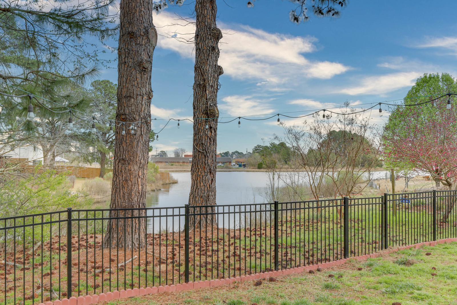 Fence and waterview.jpg