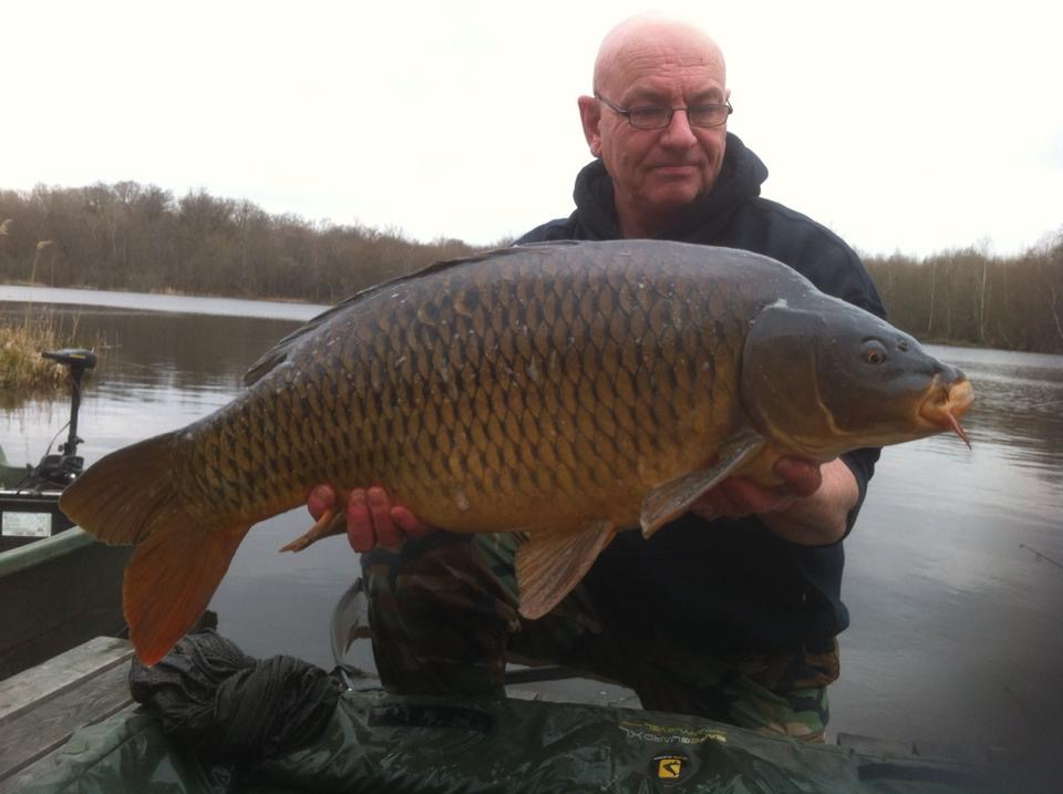 38 pound common