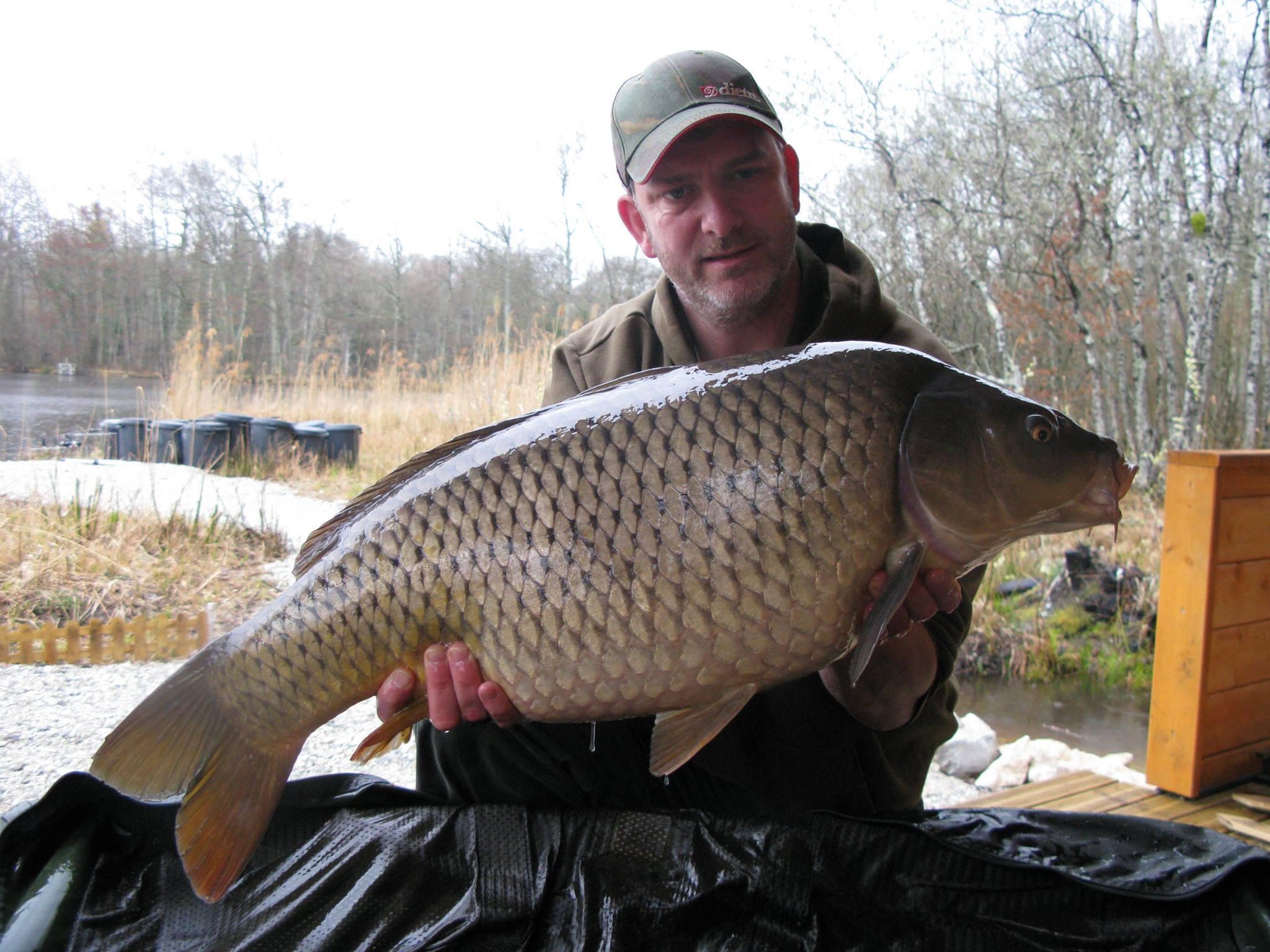 Common 32 lb - 14.4 kg