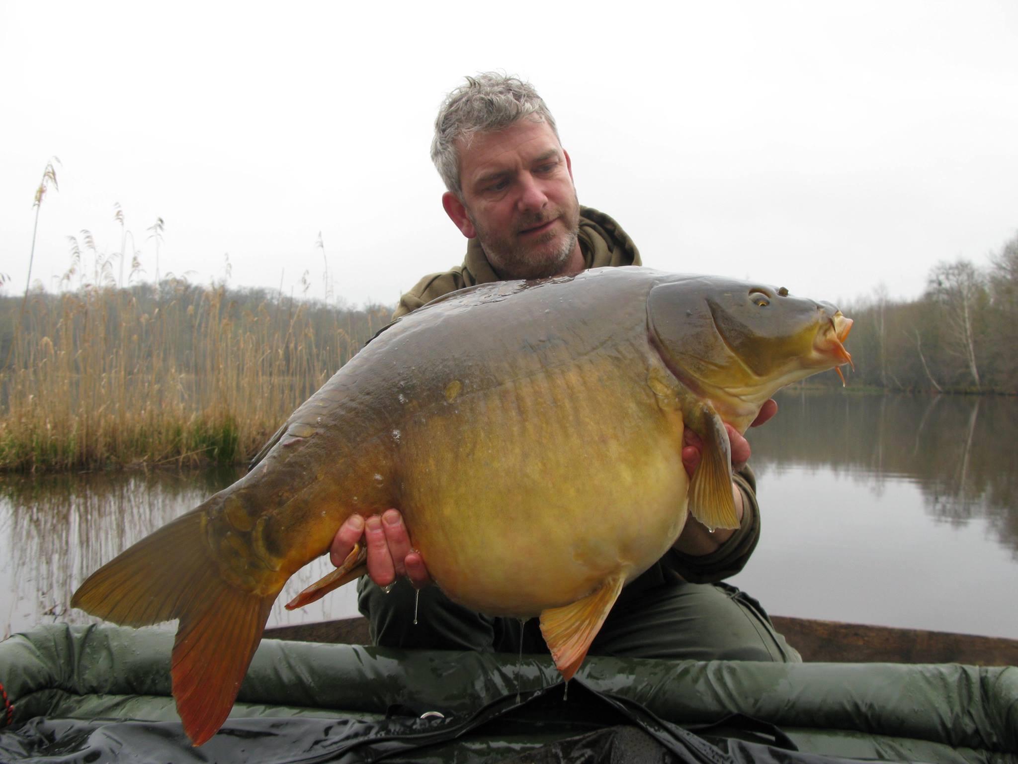 Mirror 35 lb - 15.8 kg