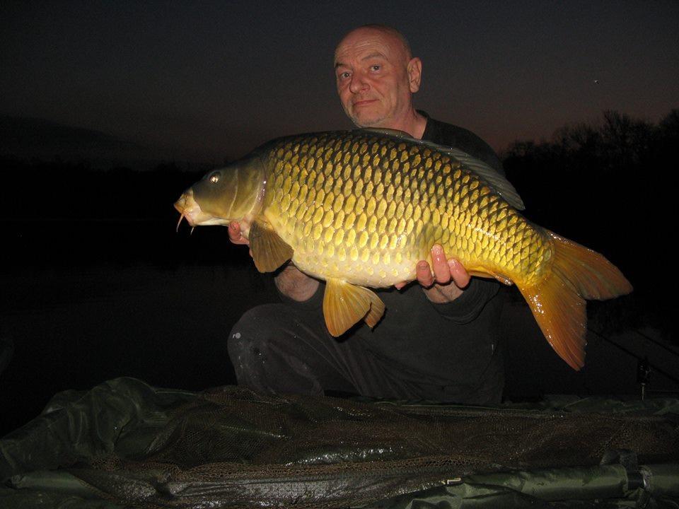 27 lb 8oz common