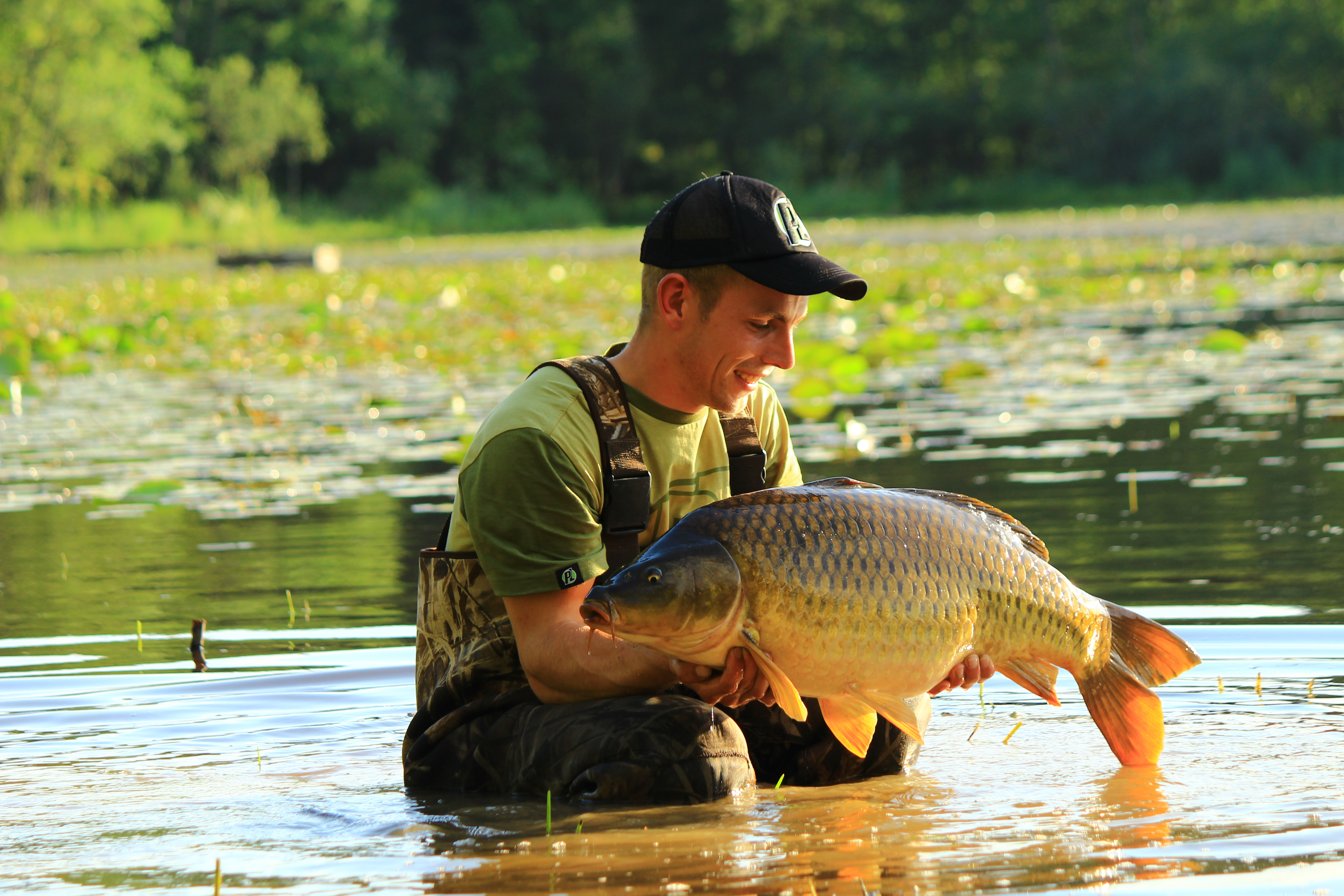 Another stunning common