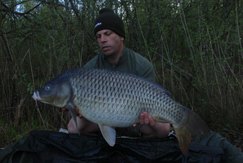 Lee 0800 Common 25lb 16th.jpg