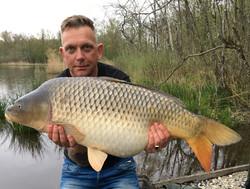 13.5 kg Common