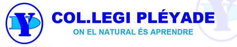 Logo pleyade_ok.jpg