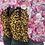 Thumbnail: Bota cowboy leopardo