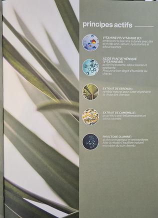 Botanikare
