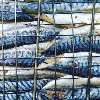 Mmm mmm mackerel.  #wildcookingeatingand