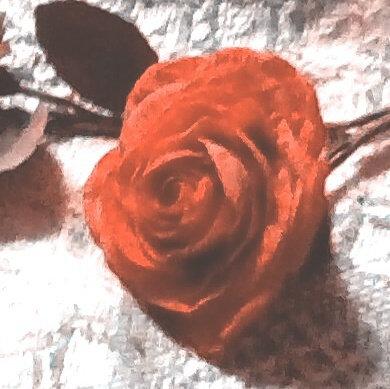 """ORANGE ROSE 2"""""""