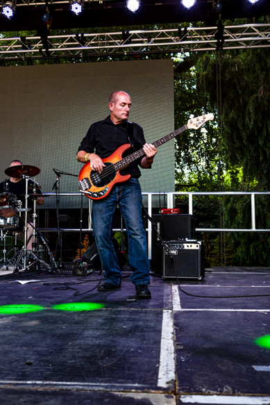 Brewood Festival - thanks to Chris Brown