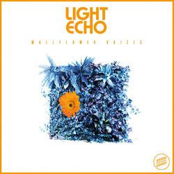 Light Echo - Wallflower Voices