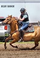 galloping home.jpg