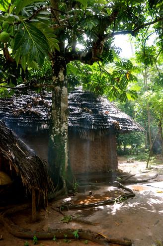 Visit a Village