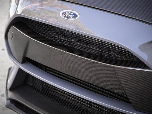 RS Carbon Fibre Front Bumper Insert (CFFBG16FDFO)