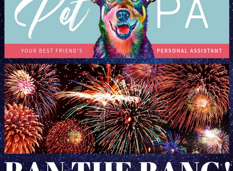 How To Care For Pets During Firework Displays