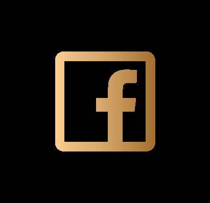 LeoDeVerzay-logo-rvb-V5-03