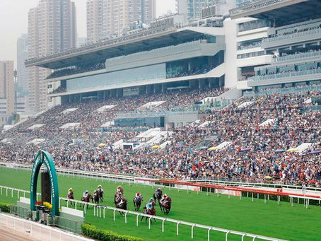 Shum and Cruz looking to show the way on day one at Sha Tin again