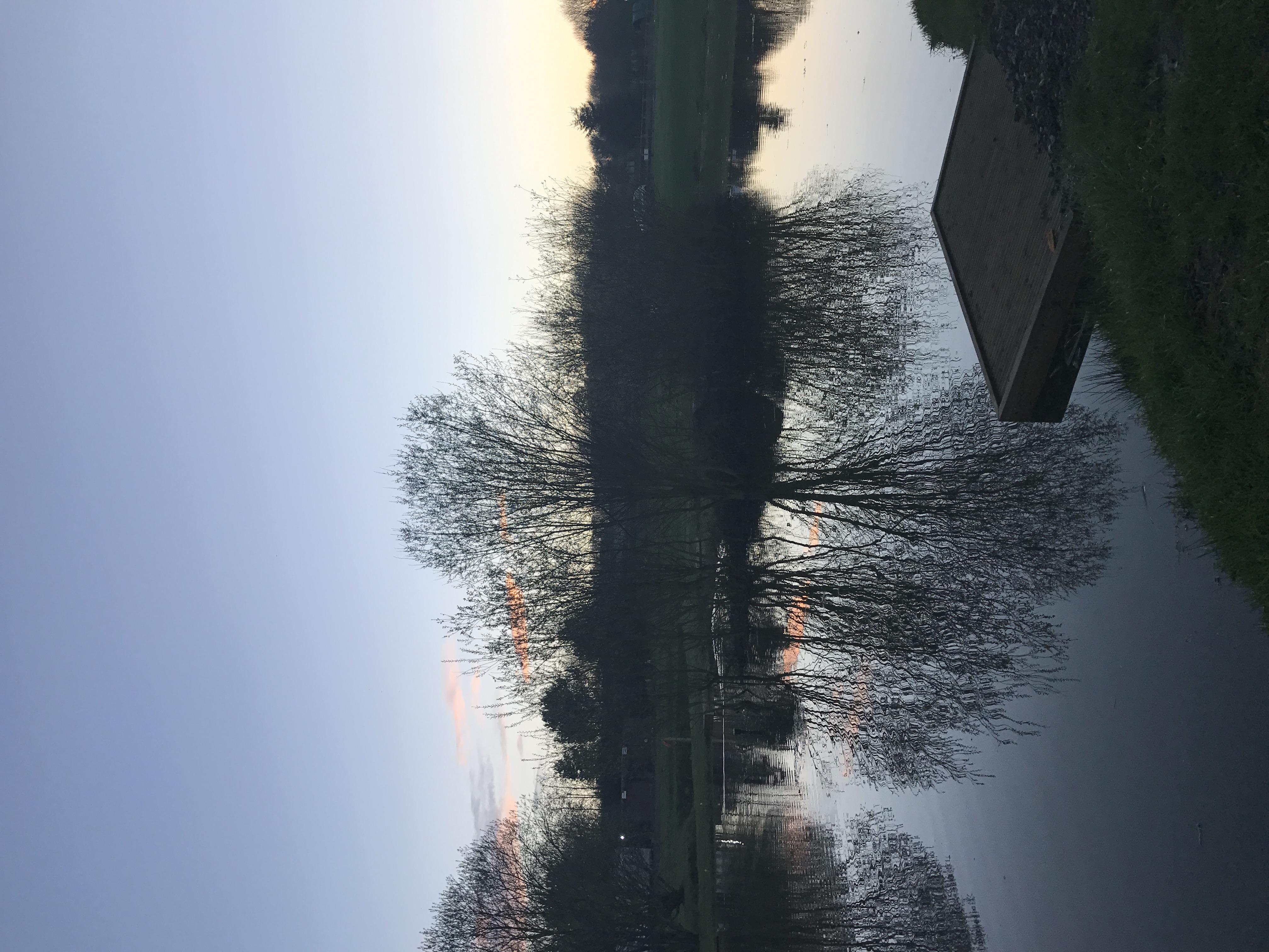 Photo 01-04-2017, 19 36 46
