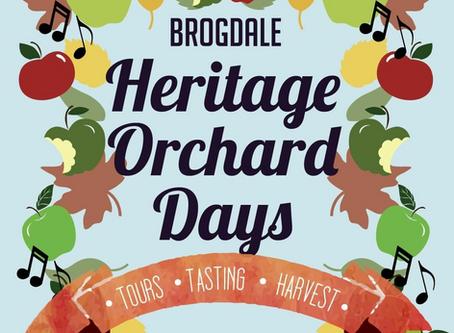August update- find us at Brogdale!