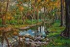 Wimberly, Tx Cypress Creek