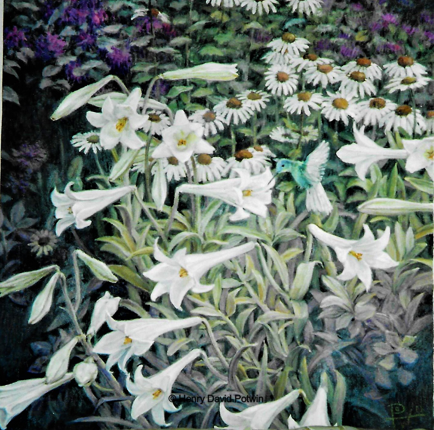 Lillies and Hummingbird  - 2000-2001 32X34""