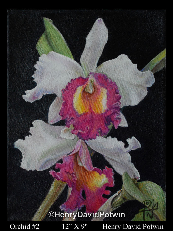 Orchid2  - 2011 9X12""