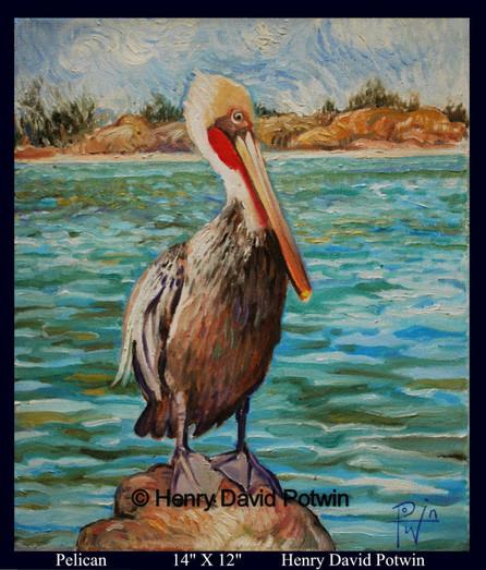 """Pelican  - 2009 14X12"""""""